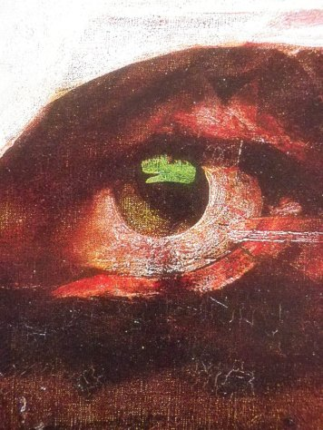 Landscape (with eye) / close up 2