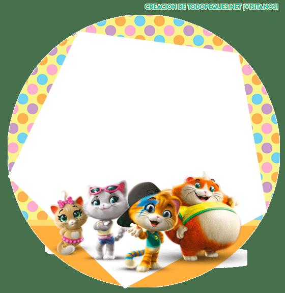 44 gatos stickers circulares etiquetas