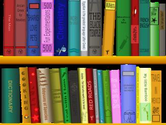 10 libros para pensar como Project Manager