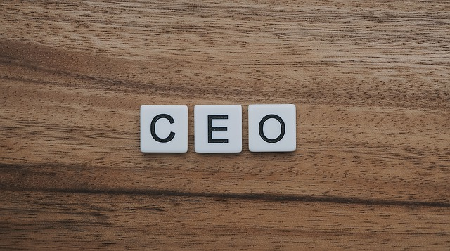 The Anti-CEO Playbook