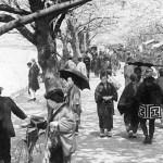 Periodo Taisho y Showa: Historia de Japón y comienzos LGTB en la historia antigua (Todo sobre Japón y sus eras)