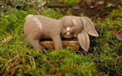 Los conejos duermen