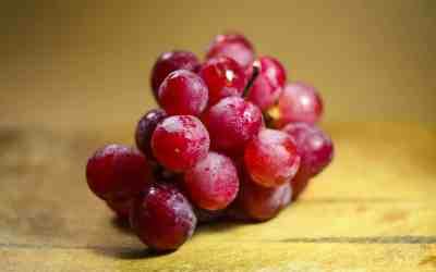 las cobayas pueden comer uvas