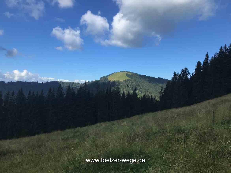 toelzer wege aktivwege wilde wege blomberg wackersberg zwiesel