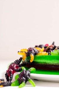 Rezept Schokoladenkuchen Wackelpudding Spinnen Halloween