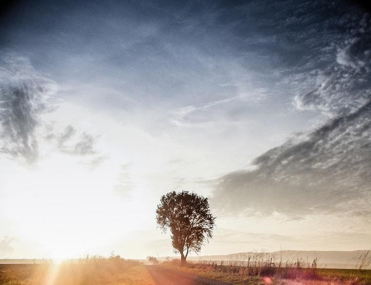 sunrise - silence