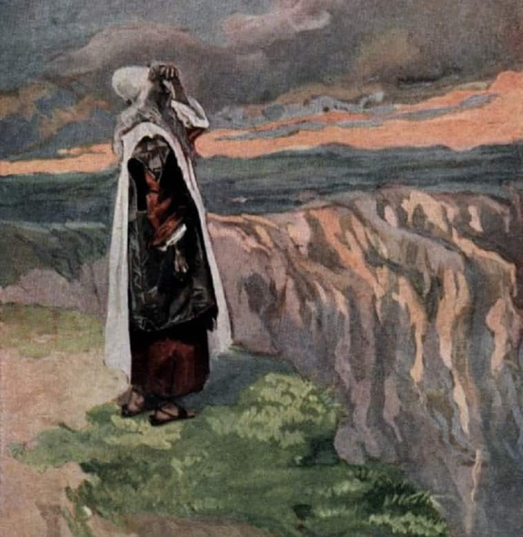 Moses sees the promised land