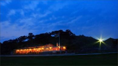 De Walvis by Night