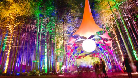 Electric-Forest1