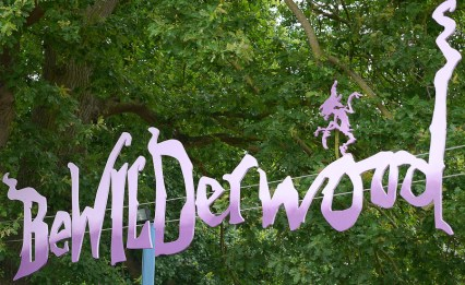 Bewilderwood-1000210