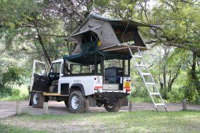 safari-LARGE