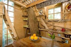 Tree_Sparrow_House_Cornwall_4