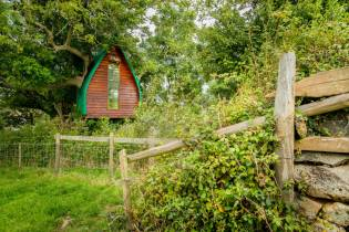 Treehotel-in-the-UK-Tree-Sparrow-House-005