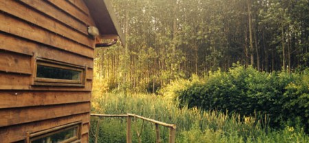 trees-off-the-veranda-at-the-arc-cabin-cambridgeshire_cs_gallery_preview