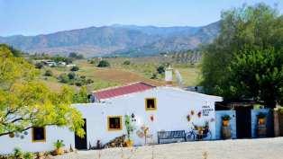 Bed-and-Breakfast-Malaga-Vida2