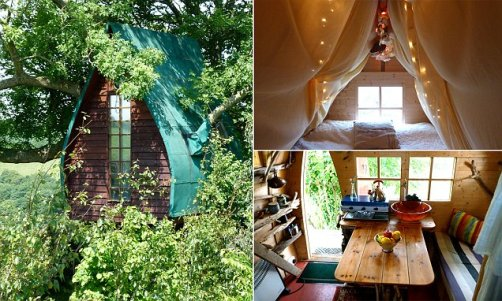 PIC FROM CATERS NEWS AGENCY - (PICTURED: THE HAND MADE TREE SPARROW TREEHOUSE.) - A magical treehouse originally made for the architects children has been transformed into a tiny hotel. With its gloriously green roof and dark wooden walls, the whimsical Tree Sparrow treehouse is almost camouflaged from the ground. Using his own two hands, artist Jonathan Melville-Smith originally built the platform part way up a towering ash tree for his children. As Jonathan, who lives on a farm in Helston, Cornwall, hosts a lot of parties, he added a shed on top to create accommodation for his friends. Finally, he decked the wooden wonder with a bunk bed, mini stove and fairy lights, turning it into a quirky cabin. SEE CATERS COPY.