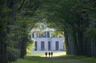 Beuk (Fagus sylvatica) - Landgoed Schaep en Burgh, theehuis het Capitool,