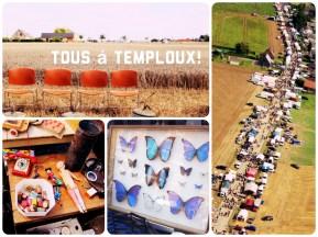 temploux-met-tekst
