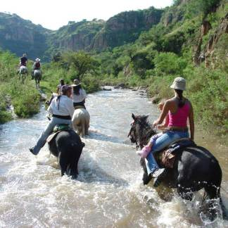 horses-crossing-river