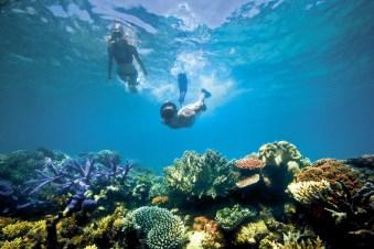 lizard-island-great-barrier-reef