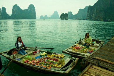 the-best-of-vietnam-tour-starting-from-hanoi-halong-bay