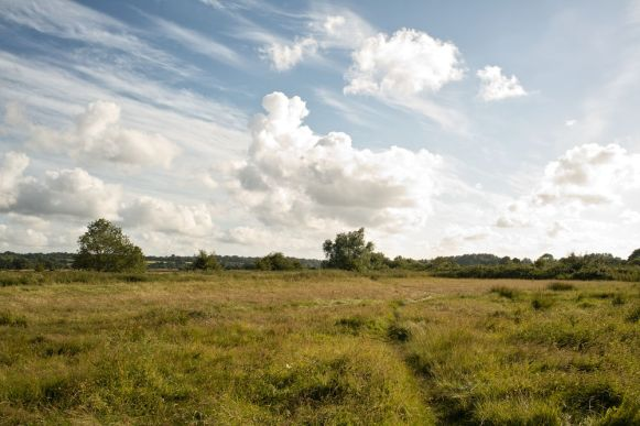 farrs-meadow-west-country-dorset-large-7