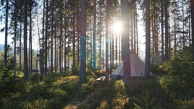 raff-taff-camp-schluchsee-sonnenstrahlen