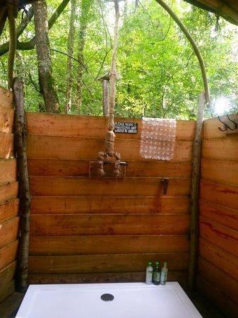 fabulous-open-tree-shower