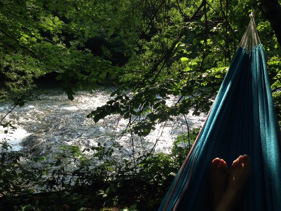 hammock-with-a-view-i