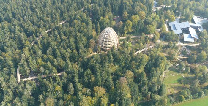 BWP_Bayerischer-Wald_5