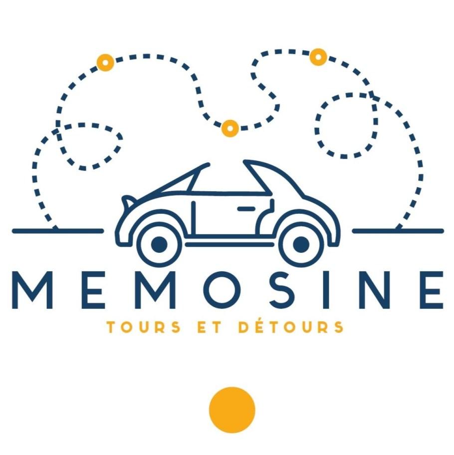 580a77b2a0496--Memosine_logo