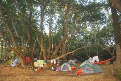 Municipal campsite VARADES