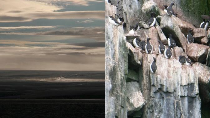 Arktisreise5, Klausbernd Vollmar