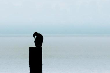 minimalistic_12