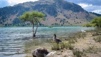 Kournas Lake
