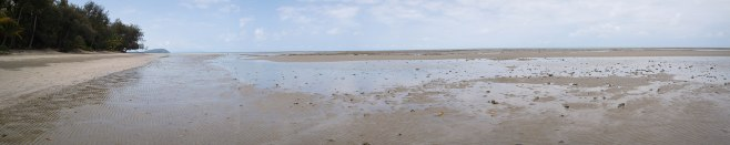 Panorama of Four Mile Beach at Low Tide