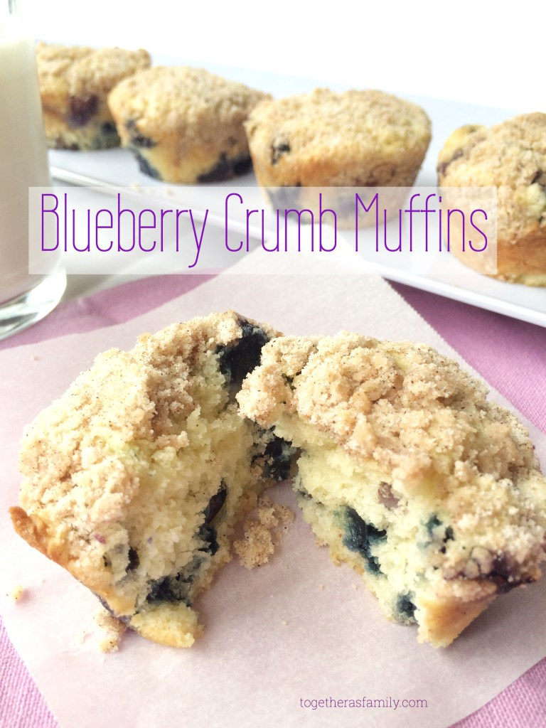 BLUEBERRY CRUMB MUFFINS- the best blueberry muffin with a sweet, sugary crumble! www.togetherasfamily.com