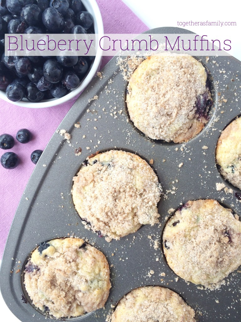 BLUEBERRY CRUMB MUFFINS- filled with fresh blueberries and the most amazing crumb topping! www.togetherasfamily.com