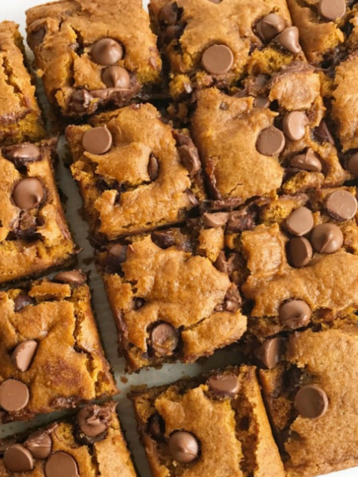 Pumpkin chocolate chip bars are the best Fall dessert and treat! Like a pumpkin muffin but more dense, cake-like, super soft, and loaded with milk chocolate chips. These are my kids' most requested Fall pumpkin treat. They are heavenly snack cake bars that are even better the next day.