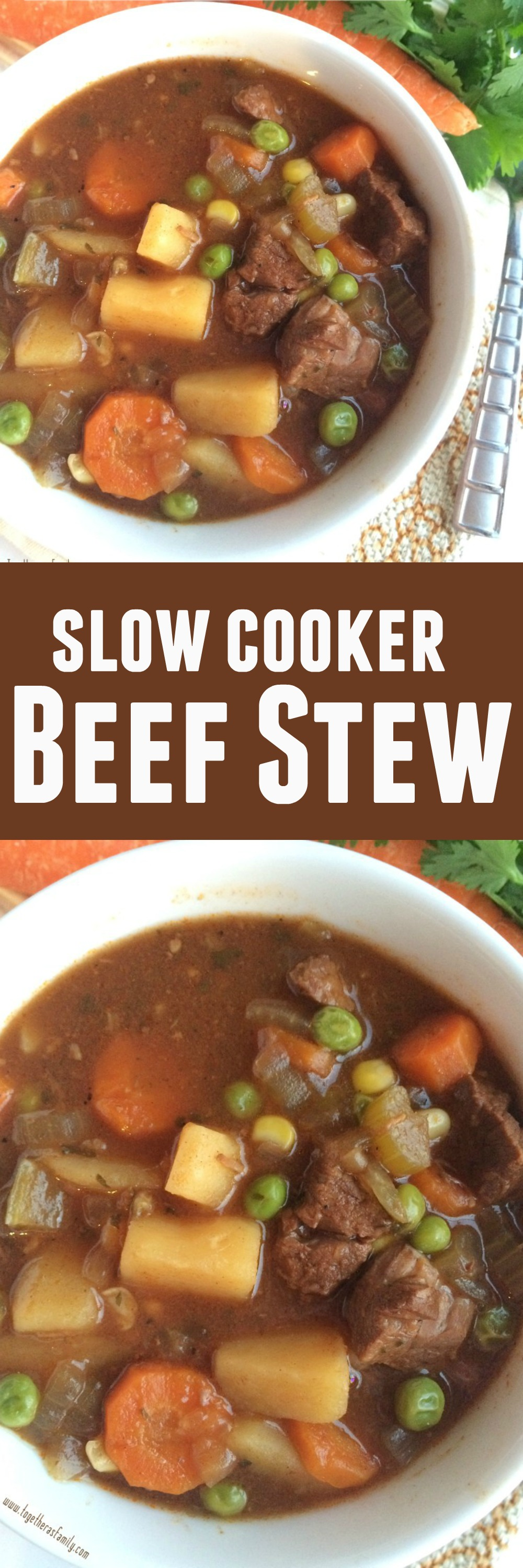 Slow Cooker Beef Stew - Together as Family