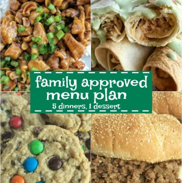 Family menu plan that your entire family will love! Easy, family approved, simple ingredients, and delicious food to enjoy together.