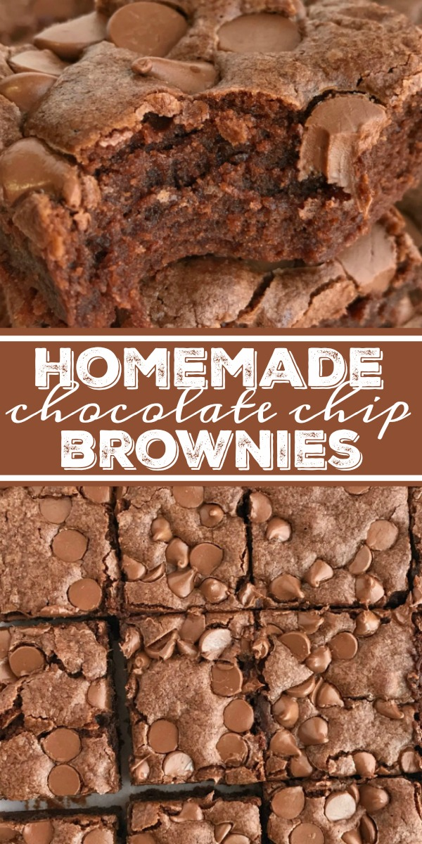 Easy Brownie Recipe | Homemade Brownies | Easy Dessert Recipes | This easy brownie recipe needs only one bowl, cocoa powder, and it's a dump & go recipe which makes these homemade brownies so simple to make. Thick, chewy, soft ckae-like brownies, topped with chocolate chips. Serve as is or with a scoop of ice cream on top. #recipeoftheday #dessertrecipes #easyrecipes #brownies #chocolate #homemadebrownies