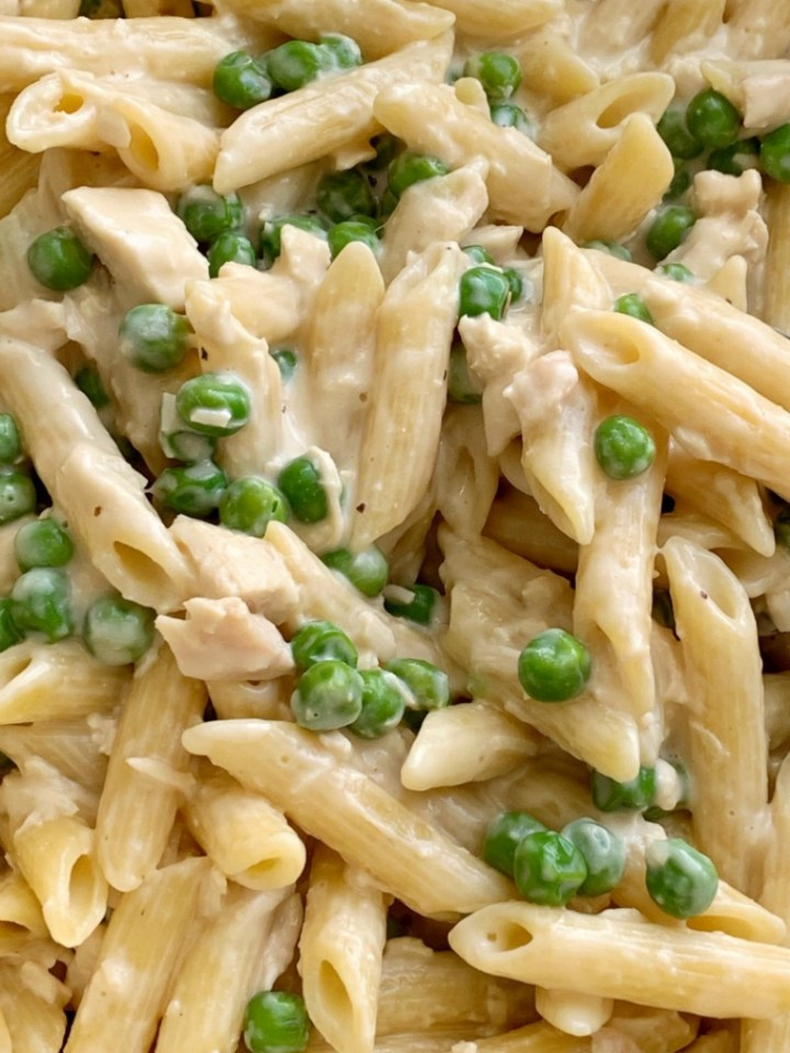 One Pot Chicken Alfredo Pasta | 30 Minute Dinner Recipe | Pasta Recipe | One Pot Chicken Alfredo Pasta is a simple weeknight dinner! Creamy alfredo pasta with green peas and parmesan cheese, and ready in under 30 minutes. #onepotrecipes #dinnerrecipes #easyrecipes #dinner #pasta #chickenalfredo #recipeoftheday
