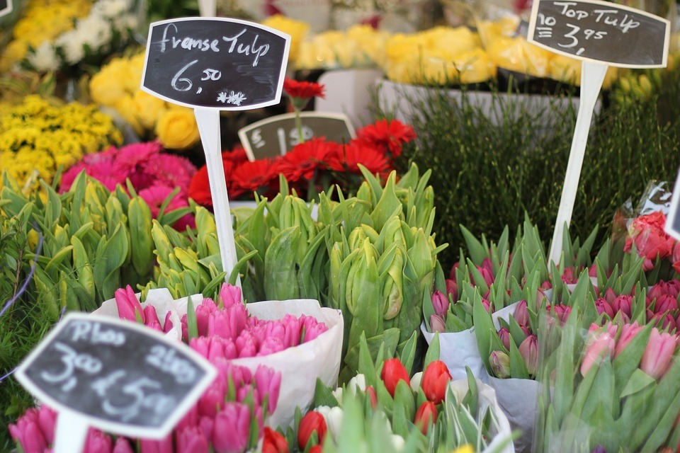 Tulips In The Netherlands - Flower market showing tulips for sale