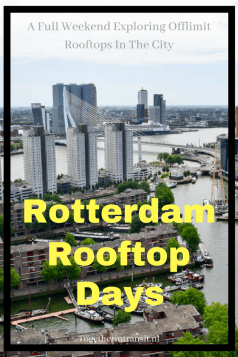Dakendagen Rooftop Days in Rotterdam is the perfect event to see the city from above