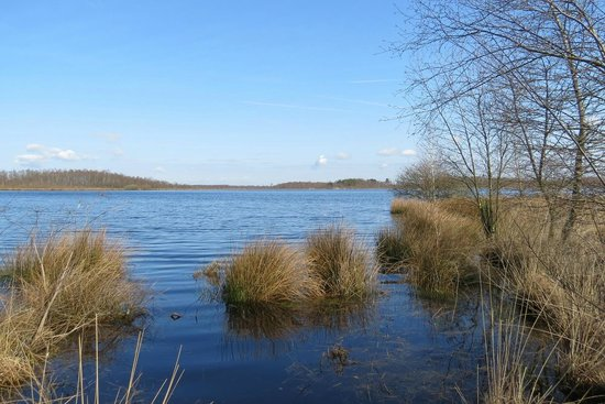 National Parks of the Netherlands - De Groote Peel