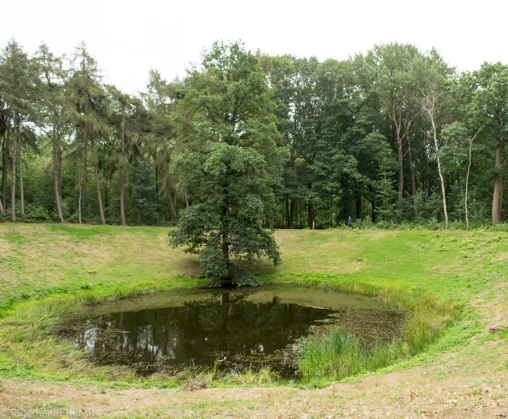 Caterpillar Crater near Hill 60