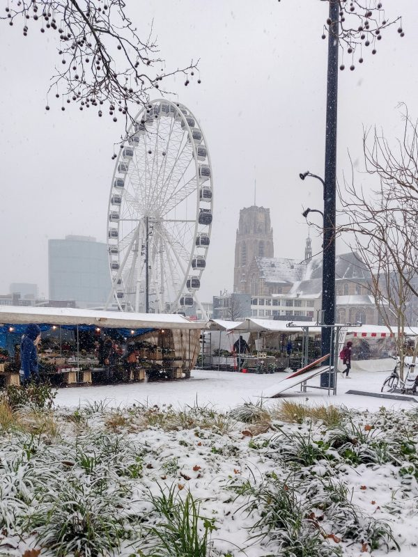 Photo taken in Rotterdam Netherlands January 22nd of the first snow of 2019