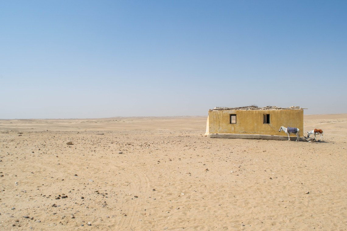 This photo is of the desert close to Saqqara pyramids togetherintransit.nl