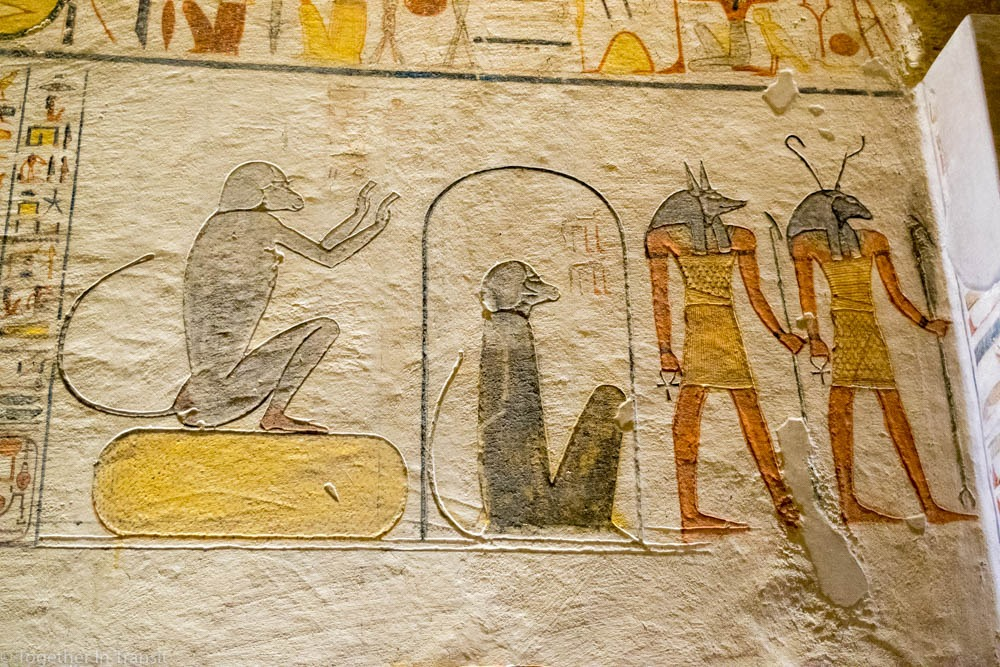 Valley Of The Kings - Ramesses IX KV6 the 9th inside the tomb in 2018 showing two monkeys